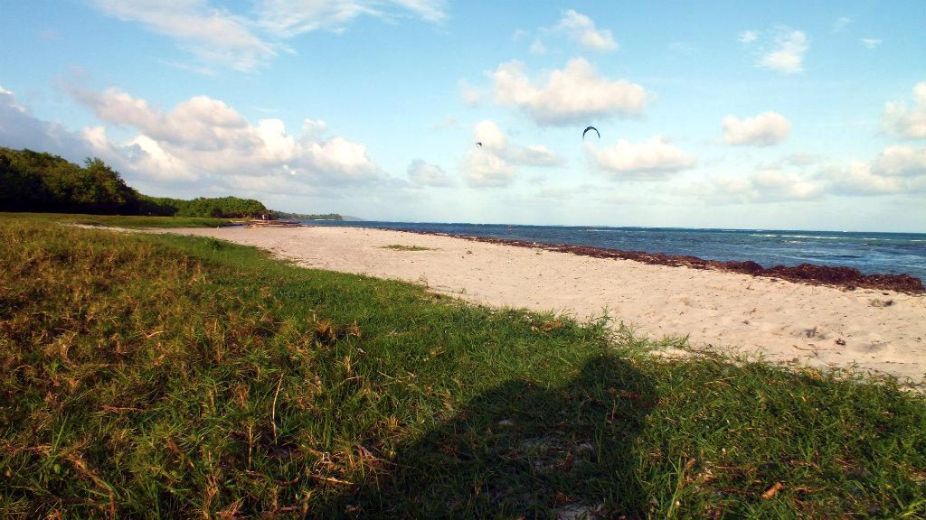 Guadeloupe - Kite (30)