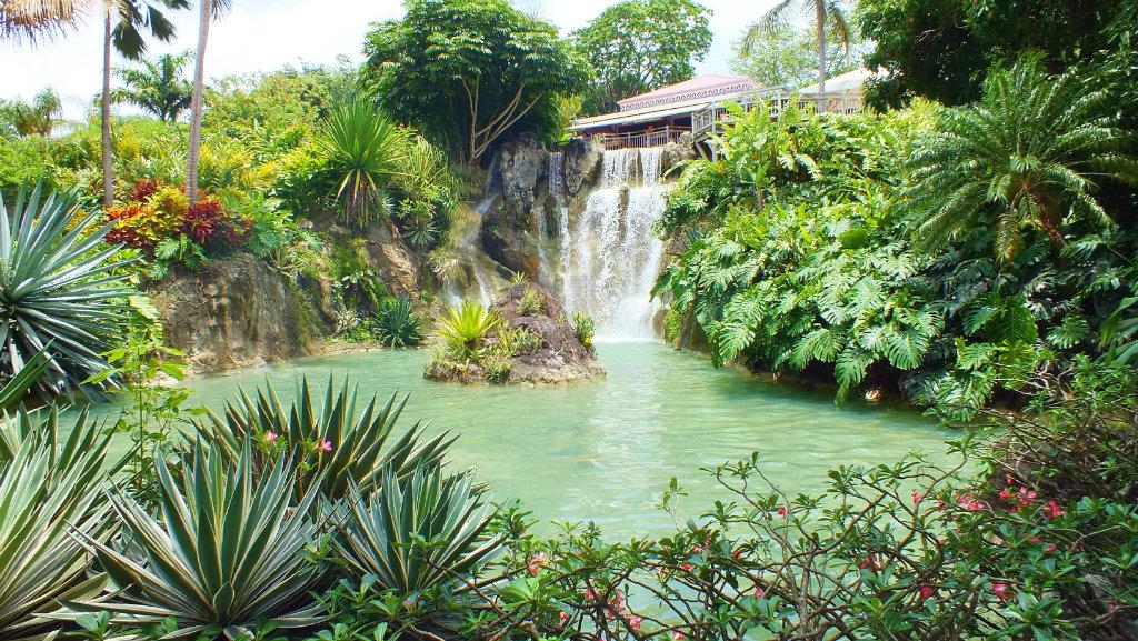 Guadeloupe - Kite (9)