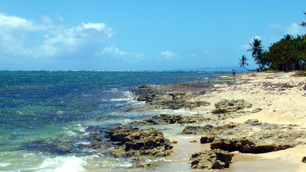 Guadeloupe - Kite (24)