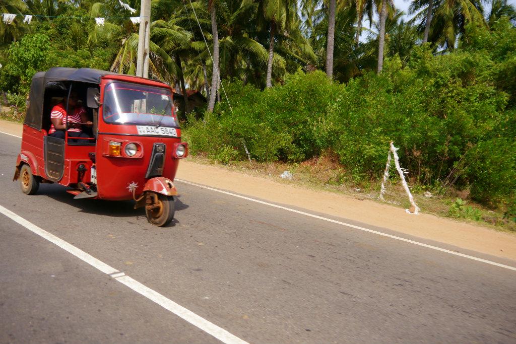Sri Lanka (26)